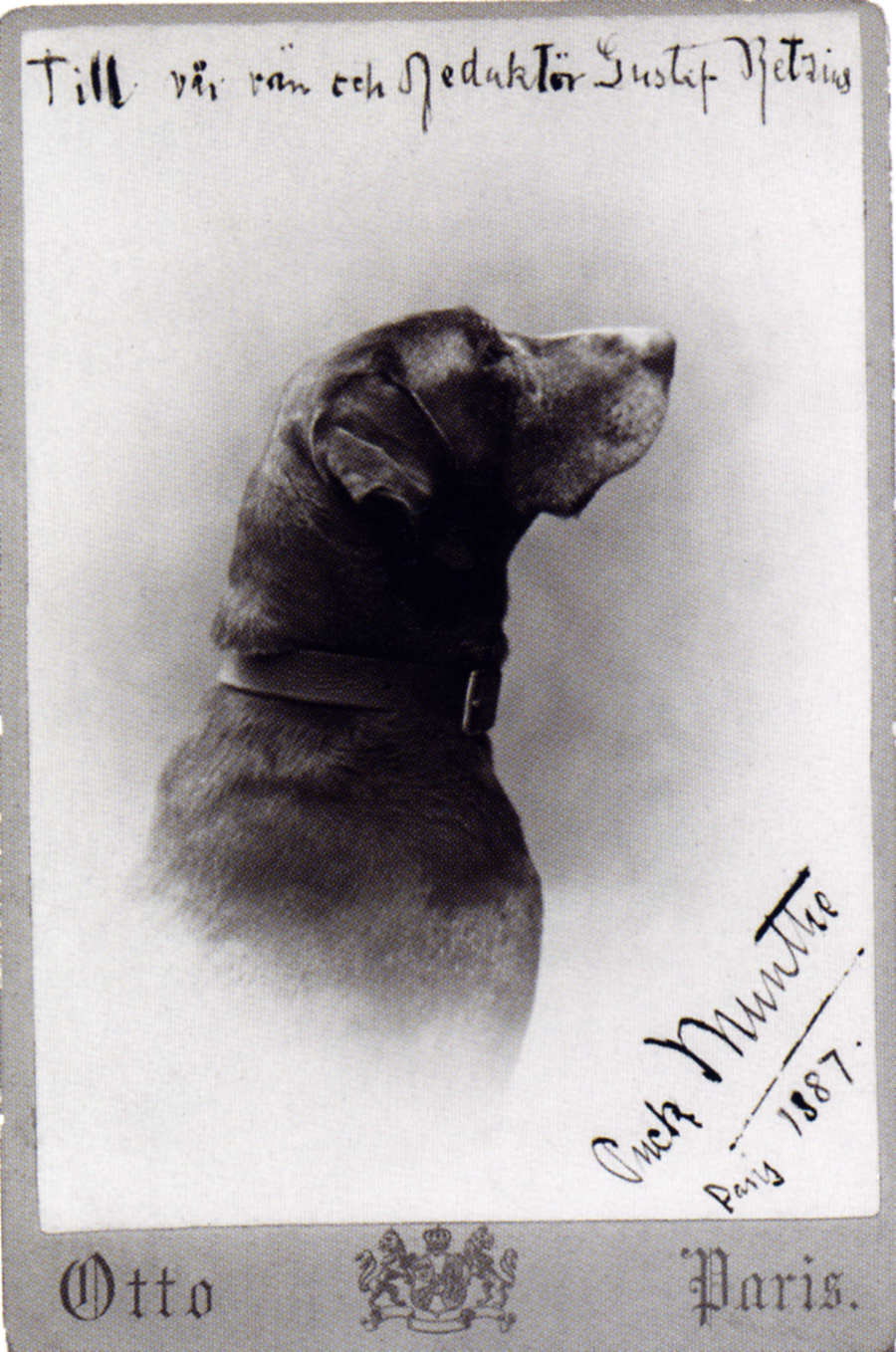 Axel Munthe's dog Puck. Munthe used his name as a pseudonym